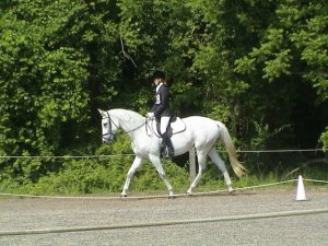 Dressage Rally with Nitro 2002