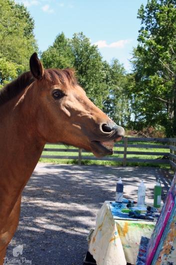 boomerang painting pony